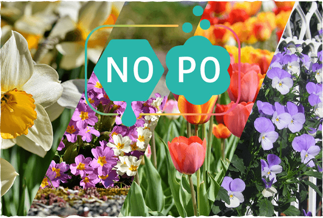 Pollen- und Nektarwert