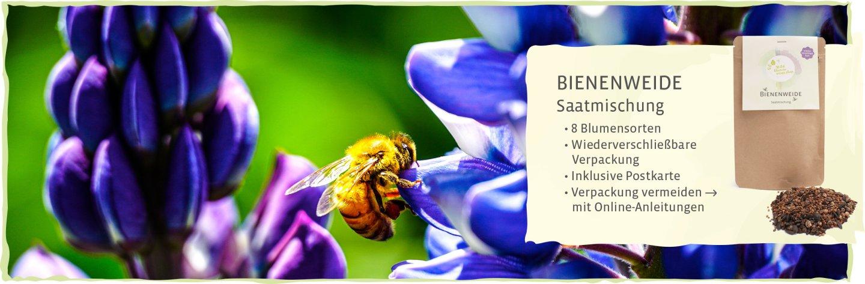Bienenweide Blumenmischung