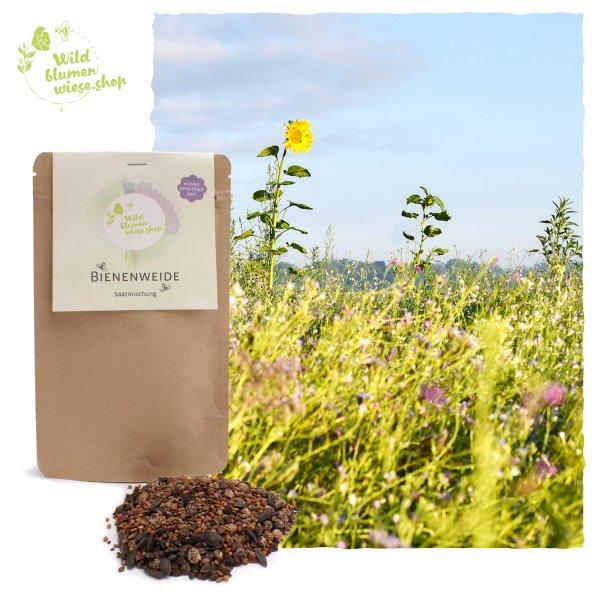 Wildblumensamen für Ihre Bienenweide - Futter für Bienen und andere Insekten
