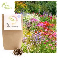 Trockenblumen Premium Samen-Mix mit vielen Sorten