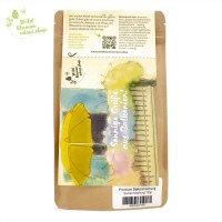 Bienenfreundliche Balkonpflanzen - PREMIUM Samen-Mix für Balkonblumen
